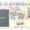 A51E Texas Fake Id Template | Wiring Resources Regarding Texas Id Card Template