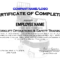 Forklift Certificate Template Free - Calep.midnightpig.co in Forklift Certification Template