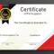 Free Sample Format Of Certificate Of Participation Template with Certificate Of Participation Template Word
