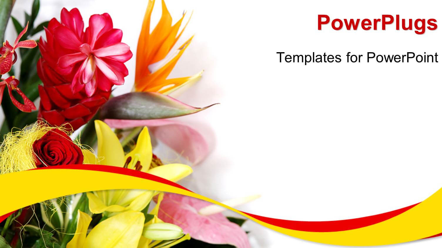 Greeting Card Powerpoint Templates W/ Greeting Card Themed For Greeting Card Template Powerpoint