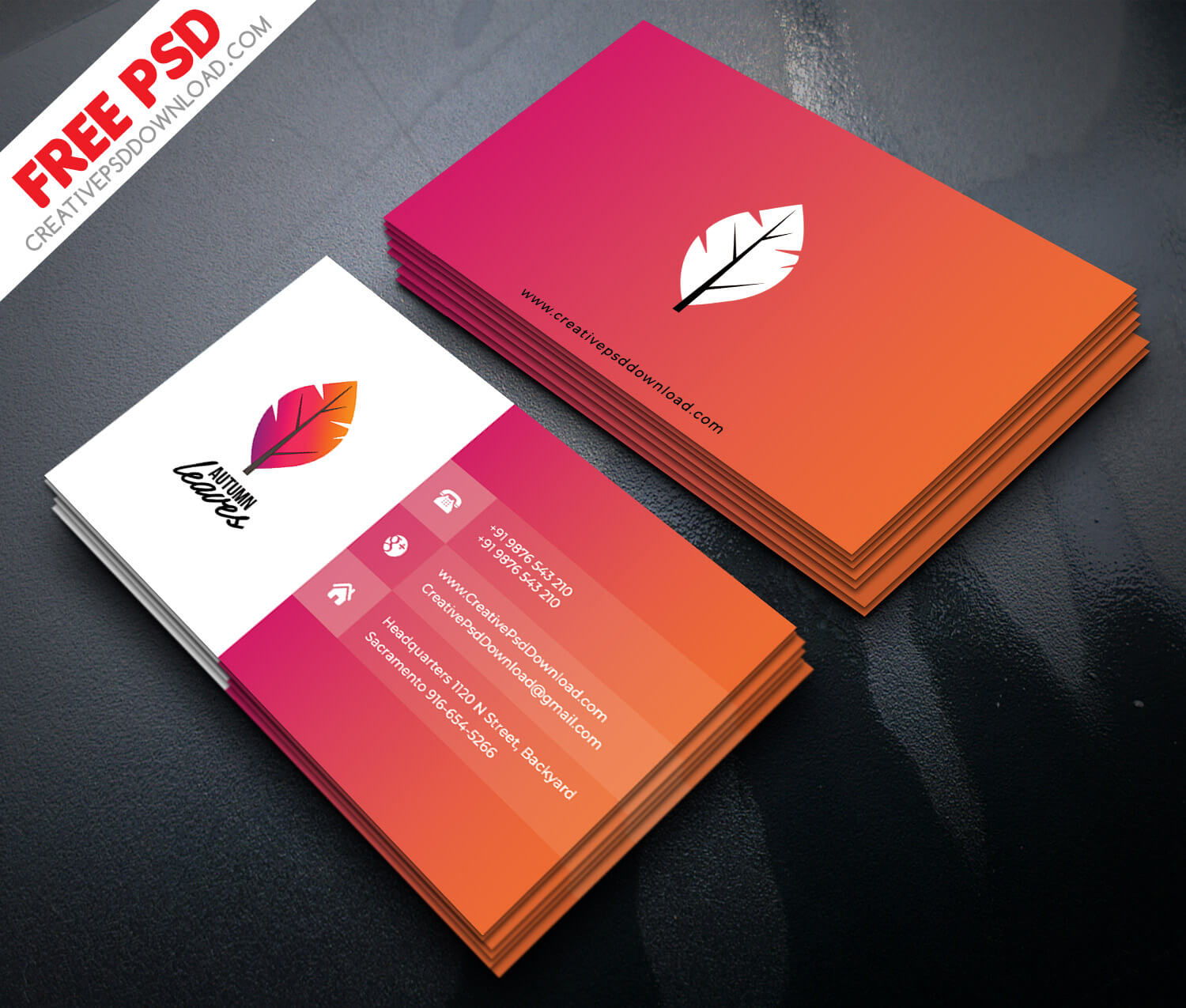 Professional Business Card Psd Free Download regarding ...