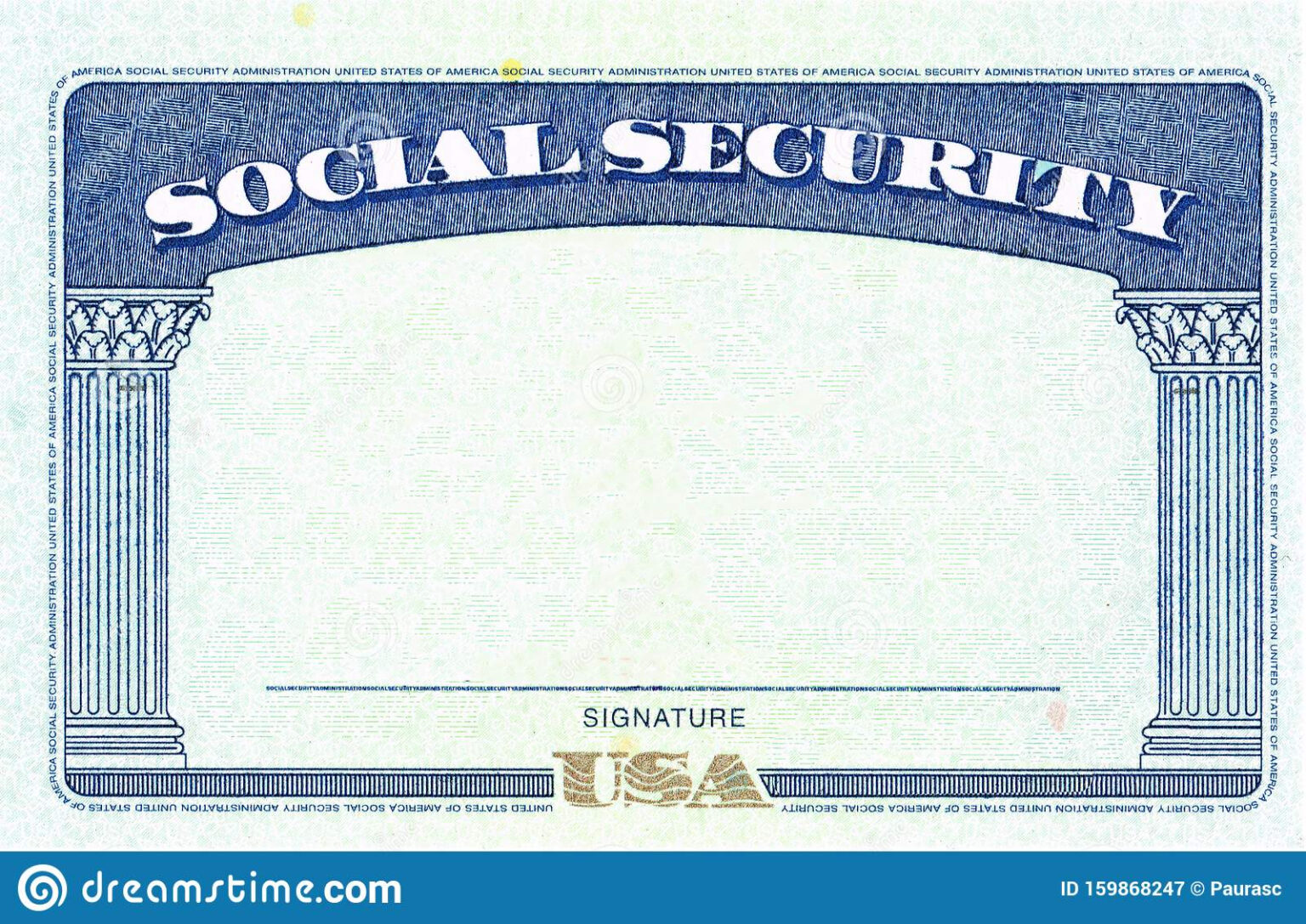 social security card blank stock image image of