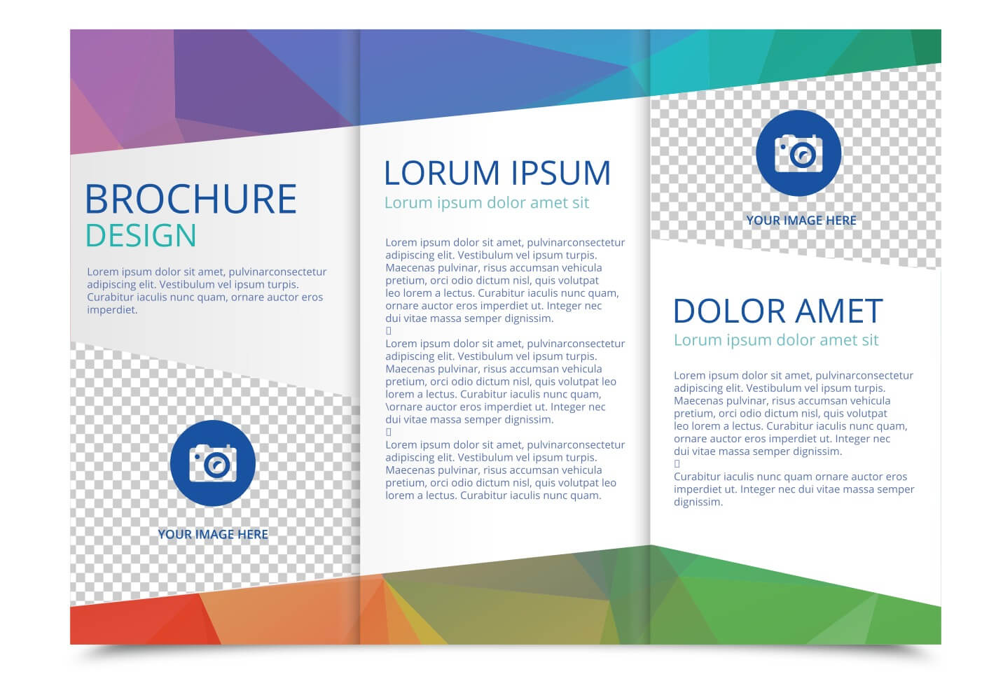 Tri Fold Brochure Vector Template - Download Free Vectors For Free Three Fold Brochure Template